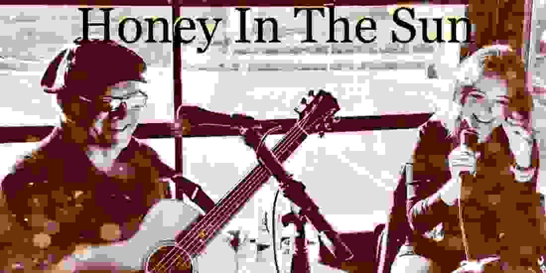 Honey In The Sun Livestream - Fort Wayne Bar Aid Event Image
